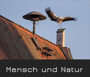 mensch und natur