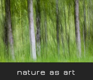 nature as art